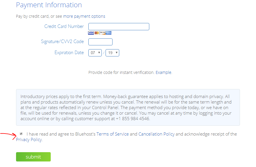payment information bluehost submit